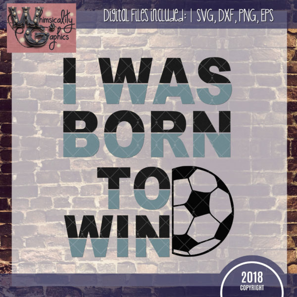 Born To Win Soccer