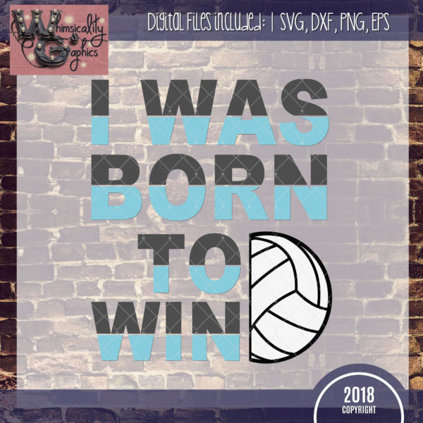 Born To Win Volleyball